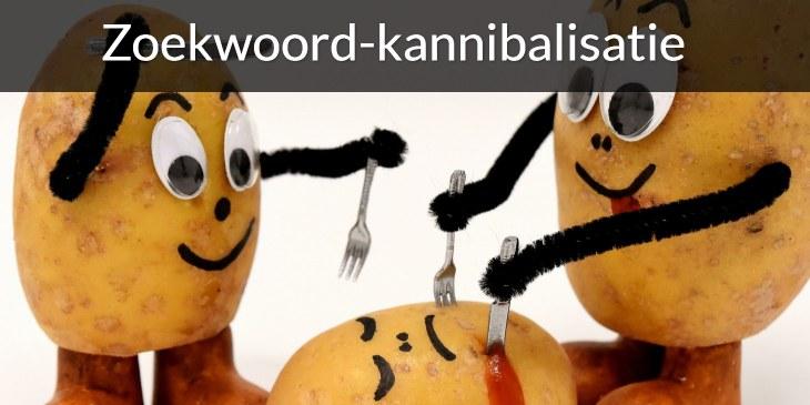 zoekwoord-kannibalisatie